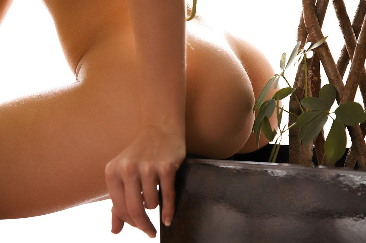 Эротические женские фото попки 1 фотография