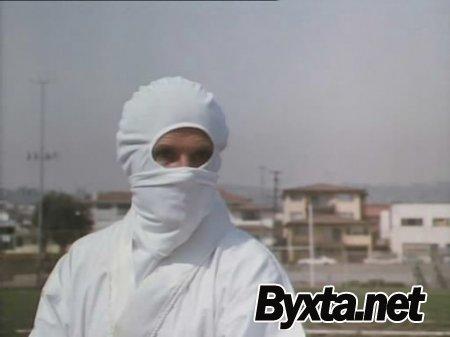 9 с половиной ниндзя / 9 1/2 Ninjas! [1991 / DVDRip]