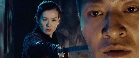 Власть убийц / Jianyu / Reign of Assassins [2010 / BDRip]